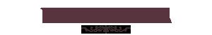 Page Plaza Logo